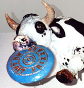 cow with frisbee